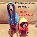 Фотоальбом Славика Пидгорнего