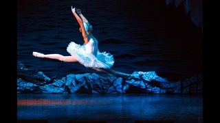 Swan Lake. Russian State Ballet and Opera House