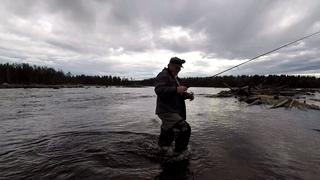 #Рыбалка#Спининг#ДжигМастер#Вертушка#Меппс#Аглия#Река Приехал на вечернию рыбалку, а тут такое.