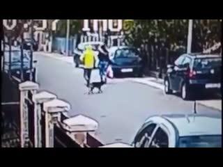 Бездомный пес спасает женщину от уличного грабителя