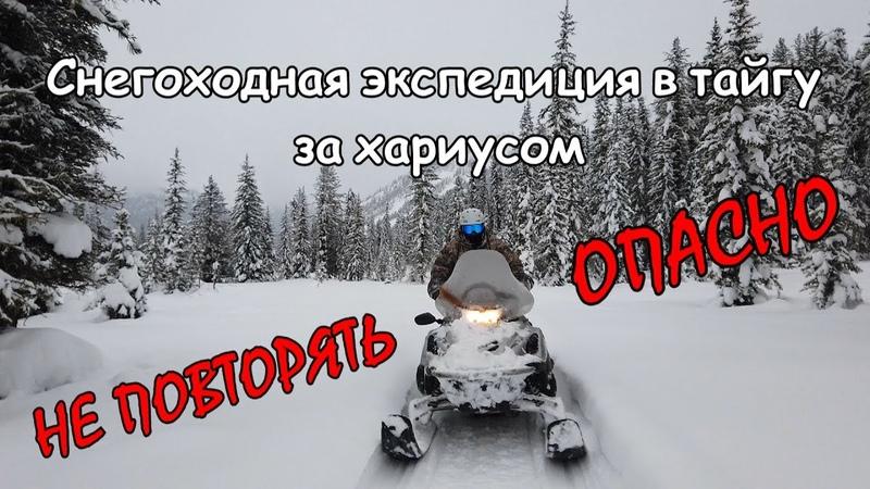 В тайгу по реке на снегоходах по глубокому снегу Зимняя экспедиция на Алтай по льду р Катунь
